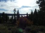 Big Bear Woodland Trail