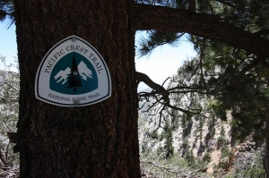 The Pacific Crest Trail is here... what other trails will you explore?