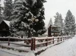 Winter_Timeline_Image