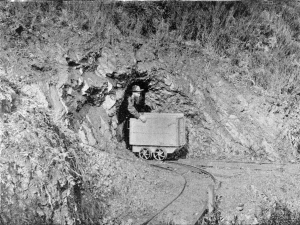 Gold miner coming out of a mine
