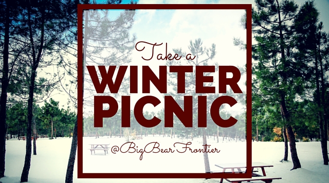 winter picnic in the snow