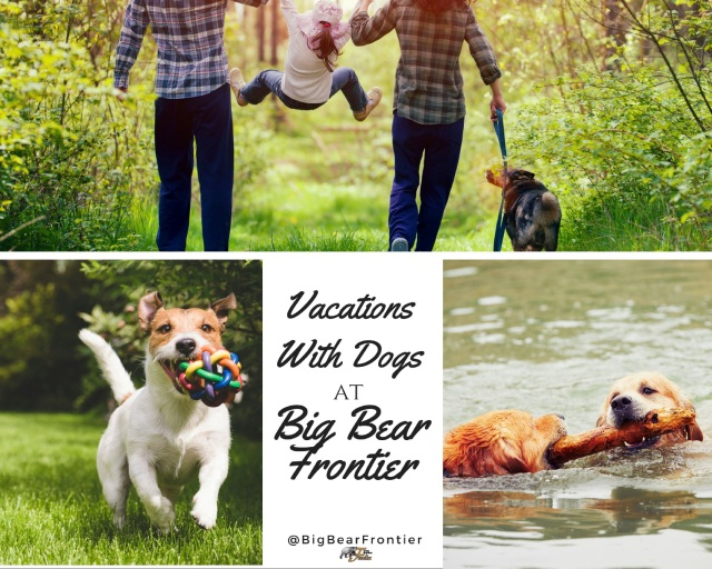 do friendly vacation Big bear Frontier image