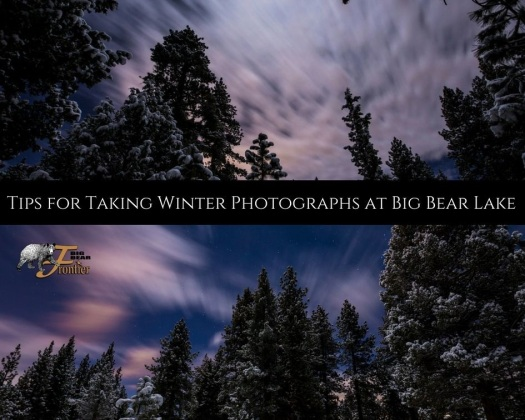 photographing nature in winter