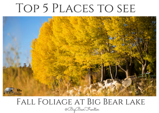 big bear fall foliage