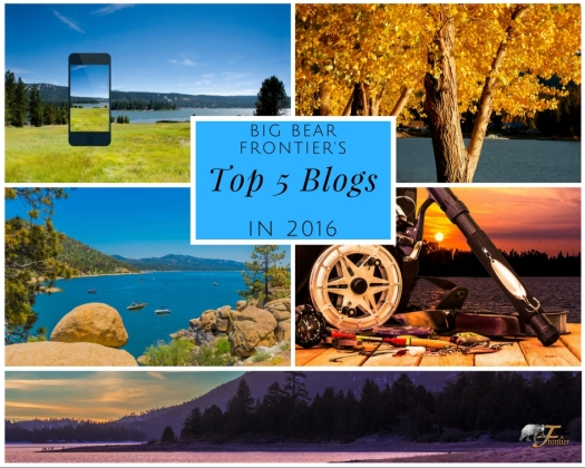 big bear top 5 blogs